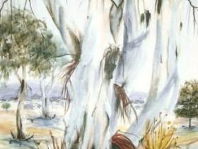 Murrarundi Majesty